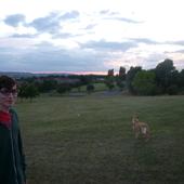 grovepark