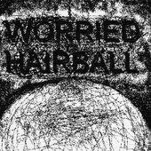 Worried Hairball