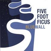 Five Foot Ficus