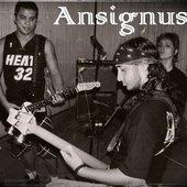 Ansignus