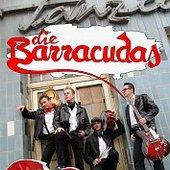Die Barracudas