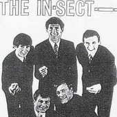 The In-Sect
