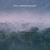 The Underemployed