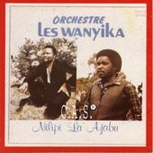 Les Wanyika