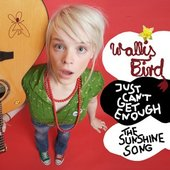 The Sunshine Song