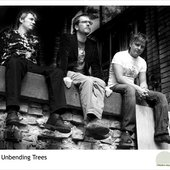 The Unbending Trees