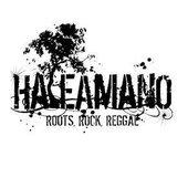 HaleAmanO Roots