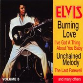 Elvis: The 100 Top Hits Collection, Volume 5