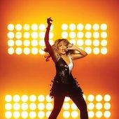 Tina Turner (2008)