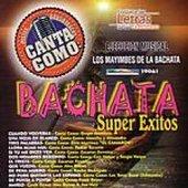 Los Mayimbes De La Bachata