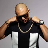 Sean Paul 2.png