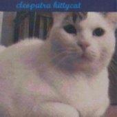 Cleopatra Kittycat