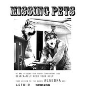 Missing Pets