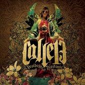 Calle 13 - Residente O Visitante.jpg