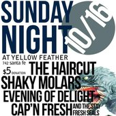 The Haircut, Shaky Molars, Night Of Joy and Cap'n fresh and the stay Fresh Seals @ Yellow Feather