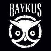 Baykuş Logo