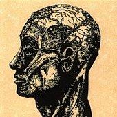 Ptomain