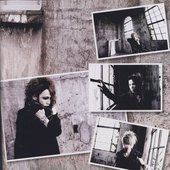 the GazettE 2008