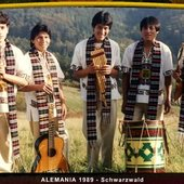 Arpay Andean Music