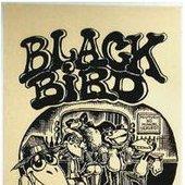 The Blackbirds (with SRV)