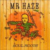 Mr Haze Dub Project