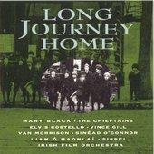 Long Journey Home: The Irish in America