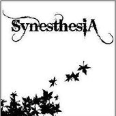 http://www.synesthesiaweb.com.ar/