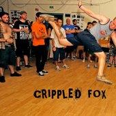 Crippled Fox @ Rise Fest