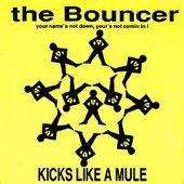 Kicks Like a Mule