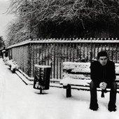 Noel in the snow