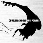 Full Powers
