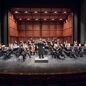 Munich Symphony Orchestra