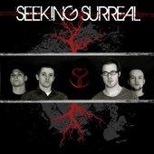 Seeking Surreal