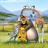Madagascar Theme Players
