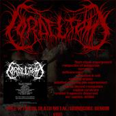 Demo 2009 Flyer