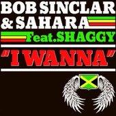 I Wanna (feat. Bob Sinclar & Shaggy)