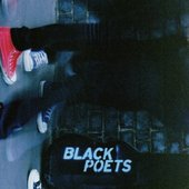 spider poets