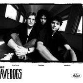 The Cavedogs