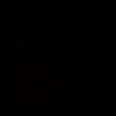 AcuticNotes Logo