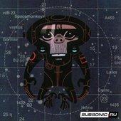 Spacemonkeyz & Gorillaz