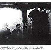 New Zealand post-punk band