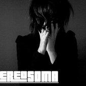THE STEREOSOMA