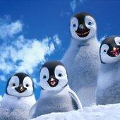 Happy Feet Two Chorus