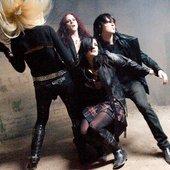 Eyelash Band Photo