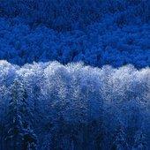 CAPA DO NOVO CD: BLUE