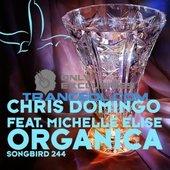 Chris Domingo