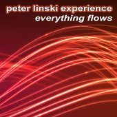 Peter Linski Experience
