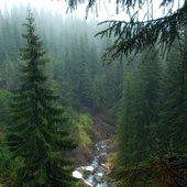 Ukraine. Carpathians