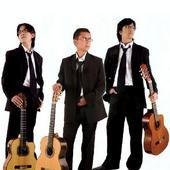 Filin Trio