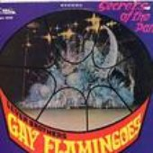 Gay Flamingoes Steelband